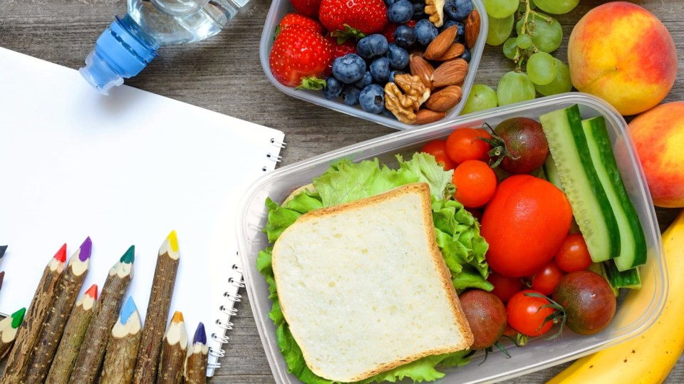 Is vegan diet healthy for kids? Belgian doctors say no